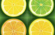 Las frutas cítricas disminuyen el riesgo de accidentes cerebrovasculares en mujeres
