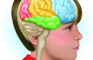 Obesidad, síndrome metabólico y deterioro del cerebro en adolescentes