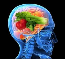 Somos lo que comemos: relación entre funciones cerebrales y dieta