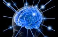 Mi Historia, mi aproximación a la psiconeuroinmunología