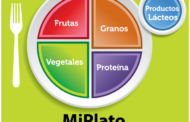 "Alimentación saludable: Guía ""My Plate"" y ""Healthy Eating Plate"""