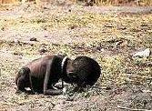 El crecimiento económico es necesario pero no suficiente para disminuir la desnutrición