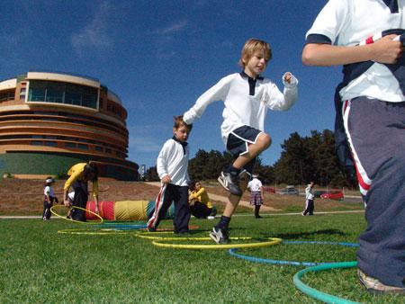 Hábitos saludables de los estudiantes vinculados con su éxito escolar