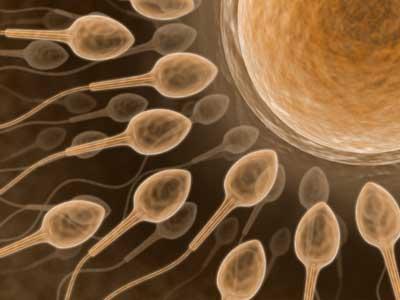 fertilidad en hombres con diabetes en