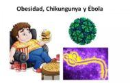 Noticias cortas sobre obesidad y cáncer, chikungunya y ébola