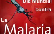 La malaria conmemora su día mundial con una buena noticia