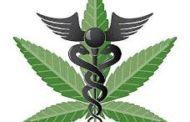 Etiquetas de productos comestibles de marihuana medicinal a menudo no son fiables