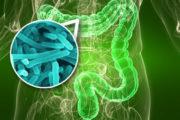 Mi obesidad, mi diabetes ¿Mis microbios?