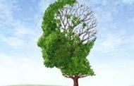 La diabetes tipo 2 envejece aceleradamente al cerebro
