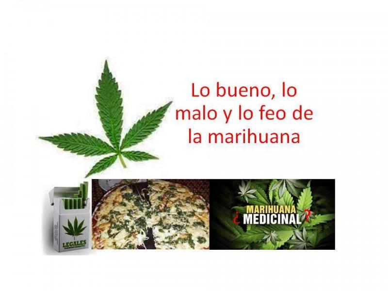 Controversias sobre la marihuana: lo bueno, lo malo y lo feo