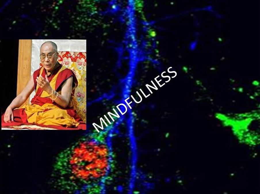 Mindfulness: un entrenamiento para ser mejores personas