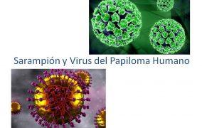 América libre de sarampión y noticias de VPH