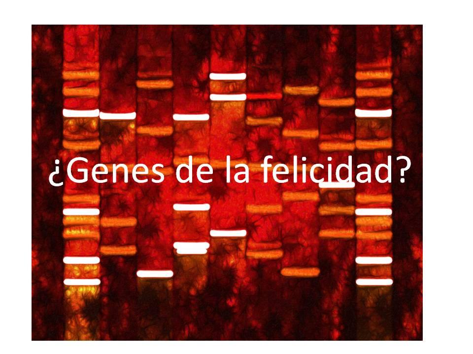 Los genes de la felicidad también están asociados con una menor actividad cerebral frente a adversidades