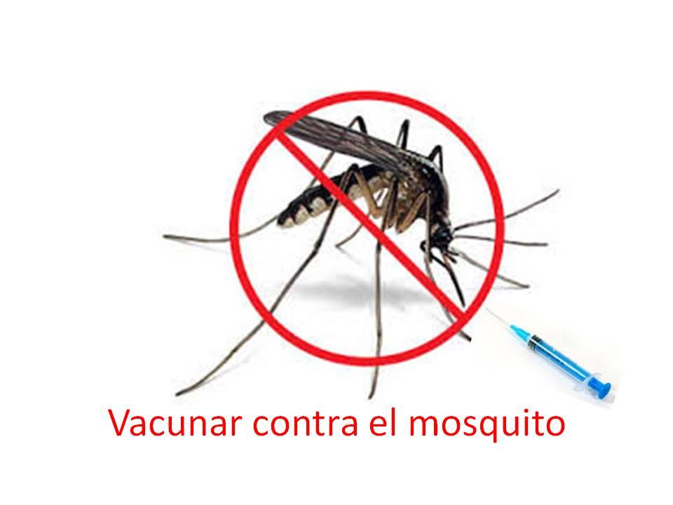 ¿Vacunas novedosas para enfrentar las enfermedades trasmitidas por mosquitos?