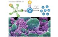 Nanotecnología, nanovacunas, inmunoterapia y cáncer