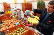 Bancos que no requieren de efectivo sino de solidaridad: Bancos de Alimentos. IV