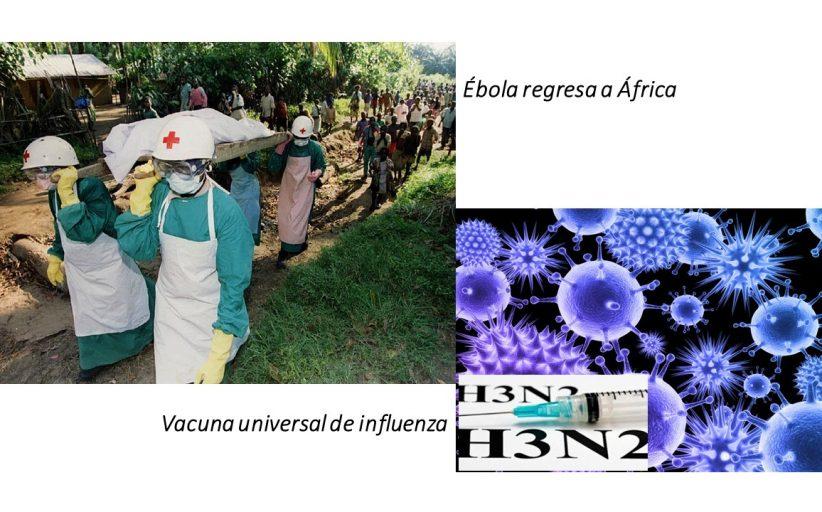 Noticias sobre las vacunas de ébola e influenza