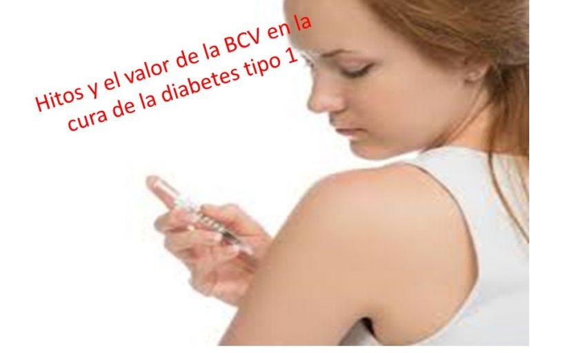 Hitos en la investigación de la vacuna BCG y la cura de la diabetes tipo 1