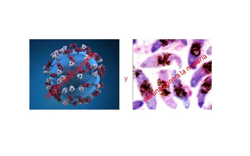 Entre la emergencia por el sarampión y los nuevos retos de la vacuna contra la malaria