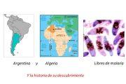 Argentina y Algeria: libres de malaria. También contamos su historia