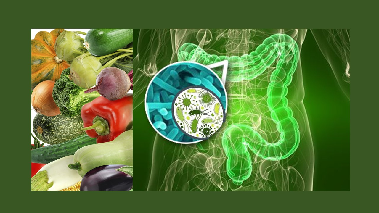 Inagotable microbiota: Los beneficios asociados a una dieta rica en productos vegetales se evidencian en la enfermedad de Crohn