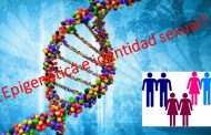 Factores asociados a la identidad de género