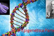 Epigenética: ¿somos dueños de la expresión de nuestros genes? Parte II