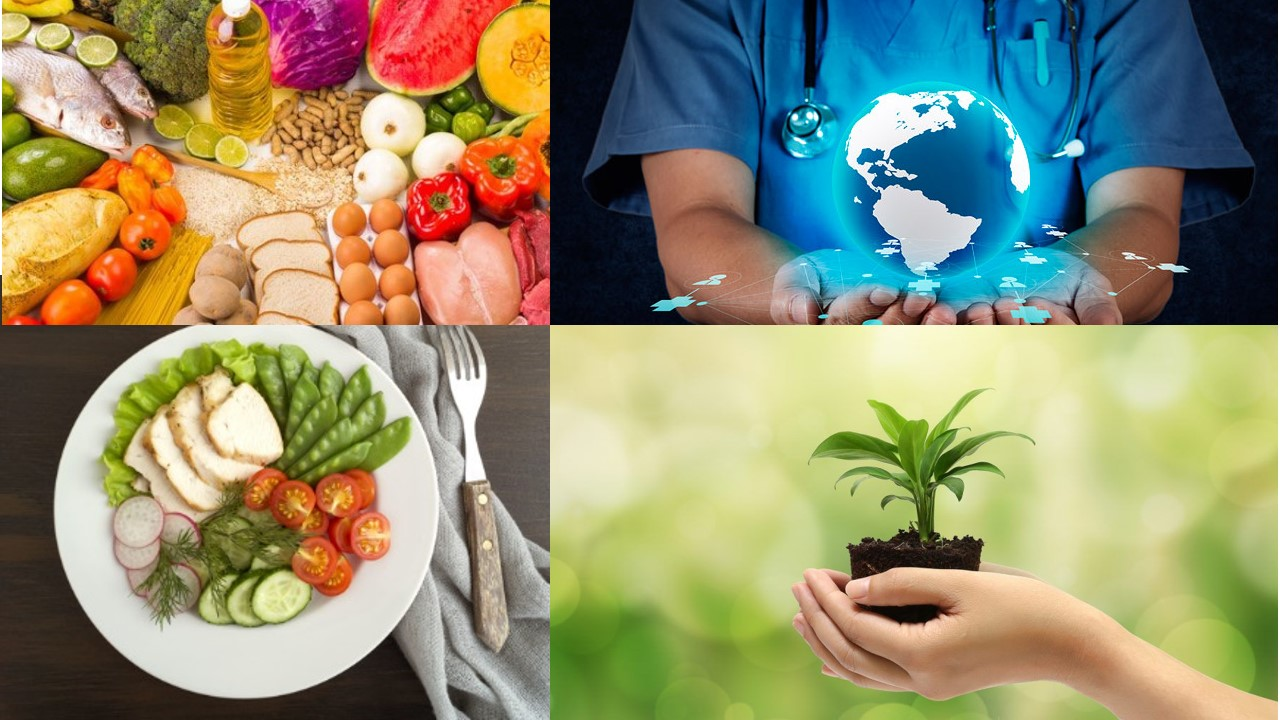 Impacto en la salud y en el ambiente de principales grupos de alimentos: Si no es bueno para ti, tampoco para el planeta