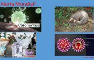 ¡ALERTA! Continúan las noticias sobre la epidemia de coronavirus 2019-nCoV en China