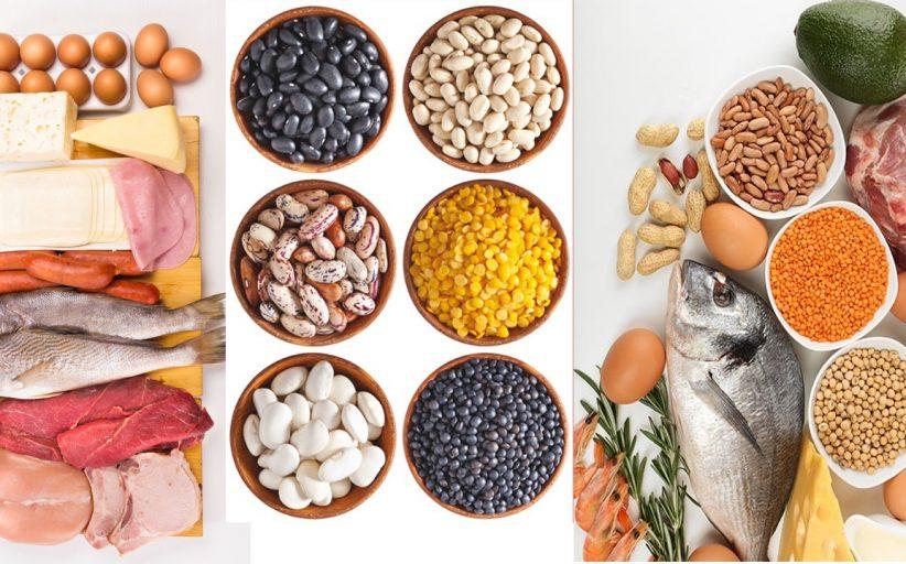 Apuntes recientes sobre dietas altas en proteínas y salud renal