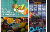 En la pandemia por COVID-19 se recomiendan las frutas y hortalizas para fortalecer el sistema inmune