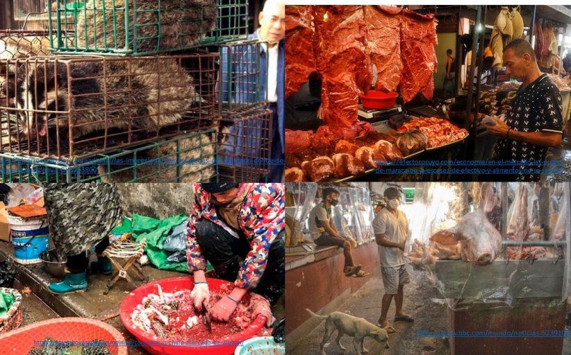Reflexiones sobre coronavirus, zoonosis, mercados, higiene, higiene, higiene…(I).