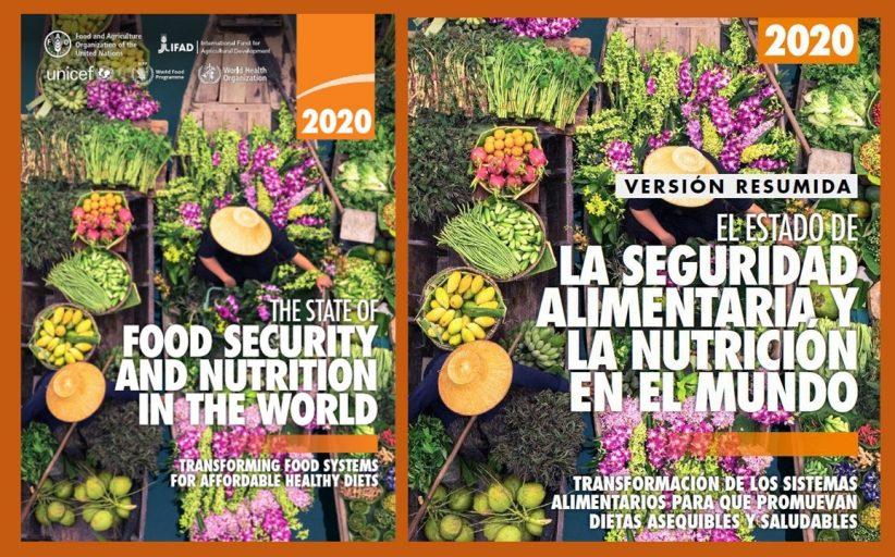 Algunos apuntes sobre el SOFI 2020 y otras reflexiones sobre la seguridad alimentaria en Venezuela