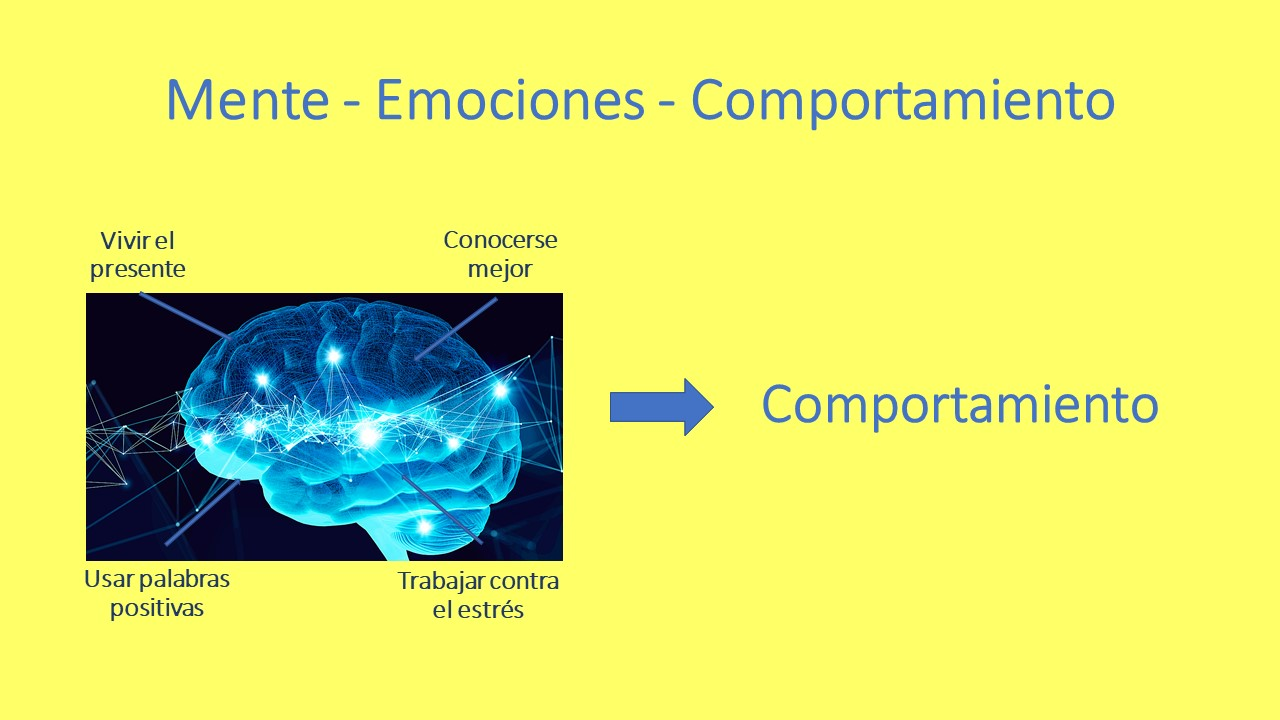 Mente - Emociones - Comportamiento