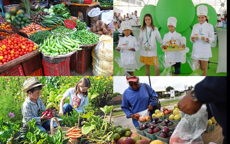 Promoción de las frutas y hortalizas: en busca de la estrategia de mayor efectividad