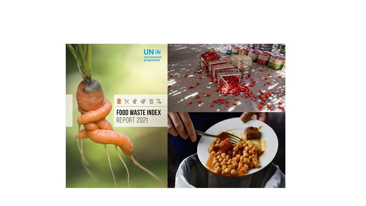 Desperdicio de alimentos. Distinto a pérdidas, igualmente dramático, pero más en nuestro control como consumidores