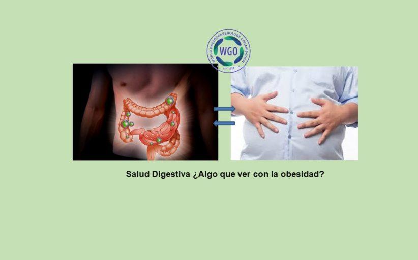Día Mundial de la Salud Digestiva. ¿Tiene que ver algo con la obesidad?