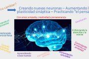 ¿Cómo mejorar la neurogénesis, la neuroplasticidad y el pensar? ¡Nuestra mente puede hacerlo!