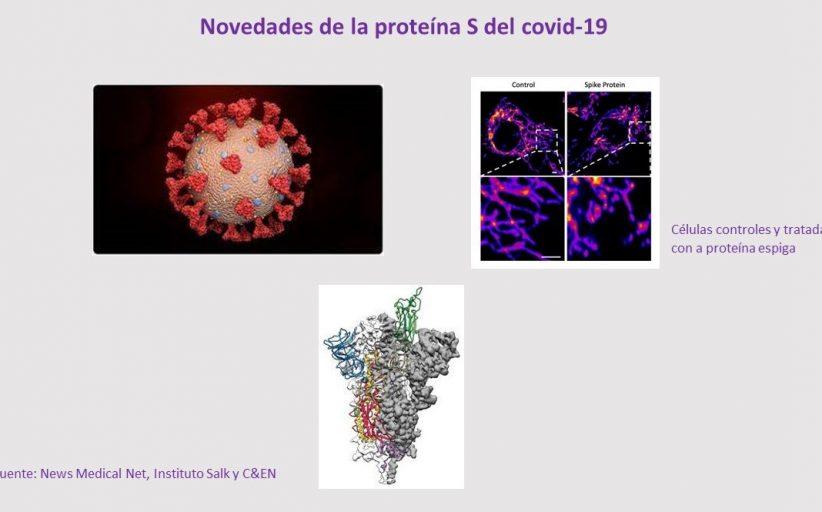 ¡Otra novedad del coronavirus que tiene al mundo a sus pies!